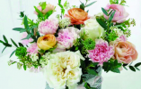 """""""女王节""""将至康乃馨、玫瑰等节日紧俏花卉价格有明显涨幅"""