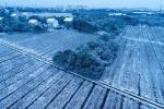 震泽初雪在古镇飘洒 宛若一片仙境