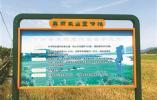 肥药减少 化肥农药用量连续5年负增长是怎样实现的?
