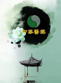 中华医药 2013