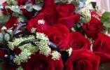 山东近21000对情侣5·20领结婚证济南一婚姻登记处用光3盒印泥