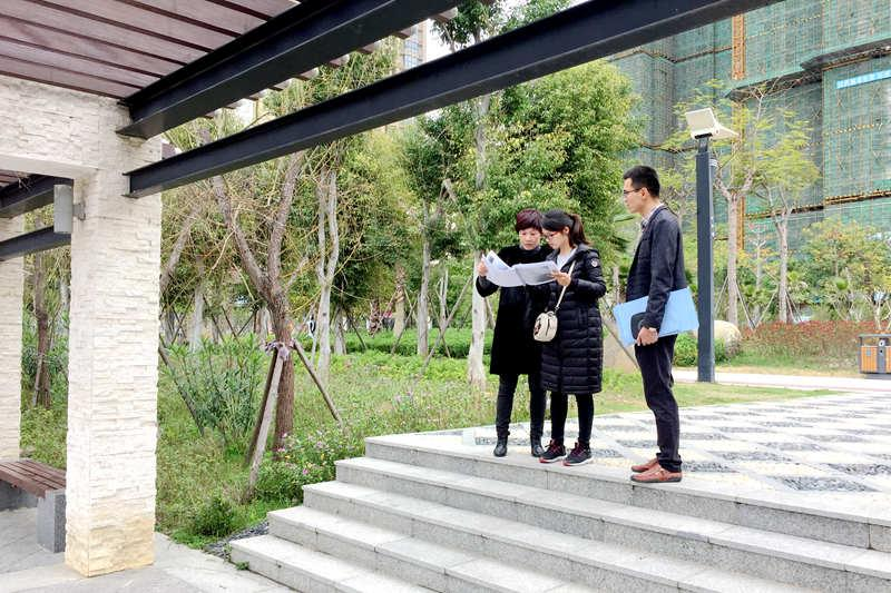 晋江市审计局开展桥南中心公园造价审核