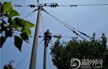 """洞头区供电公司:""""点亮""""大瞿岛 全区所有受灾点恢复供电"""