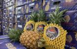 宁波人爱吃的这种水果大量上市!有店一天卖出近600箱