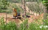 问政山东|农村生活垃圾一埋了之 每周检查流于形式