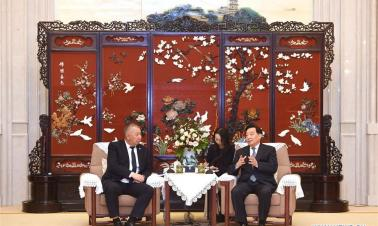 Wang Chen meets Kyrgyz first vice PM in Yangzhou