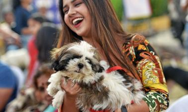 Mumbai NGO holds event to promote better lives for dogs