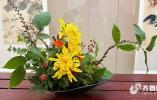 一花一叶藏巧思 济南趵突泉金秋菊展的这些插花 哪一款是你的最爱?