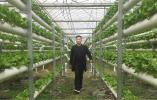 春节期间,他一天要供应杭州市场5万~8万斤蔬菜 好多杭州人吃过他种的菜