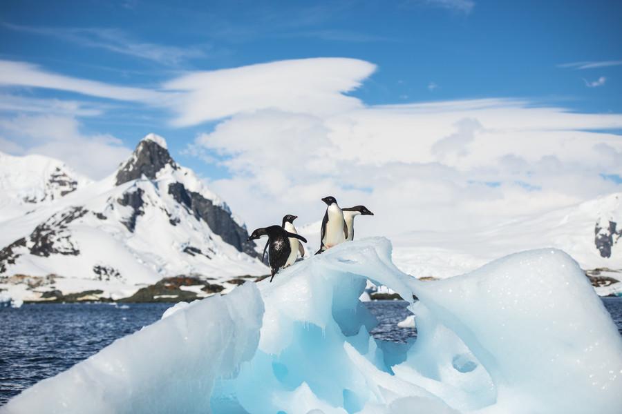 南极洲发现来自远古超新星的尘埃