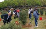 海峡两岸三毛文学论坛举行 与会者在三毛故居前种植百棵橄榄树