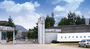 云南罗平锌电股份有限公司