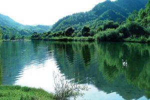 阳坝生态旅游风景区