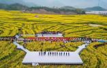 浙江油菜花节开幕 一起来看看这片黄色海洋