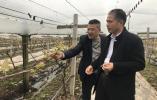 """连续阴雨影响葡萄种植 海盐""""田间医疗队""""暖心问诊"""