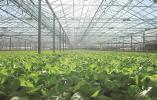 大数据开启山西智慧农业新时代